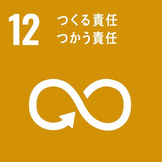goal-12